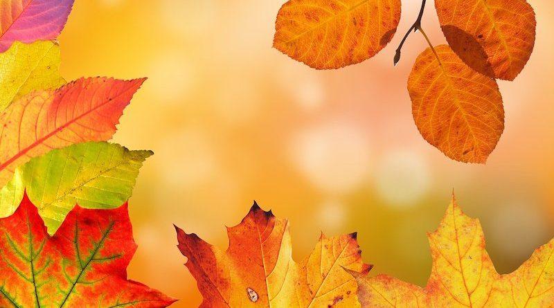 Próby pierwszych jesiennych wierszy